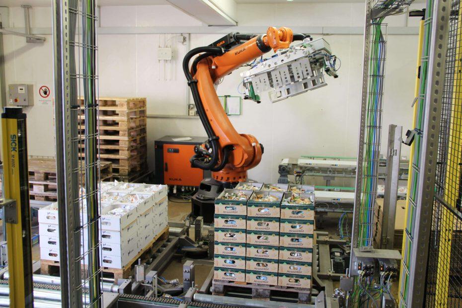 Paletizatory M.A.S. Automation 6 1 2
